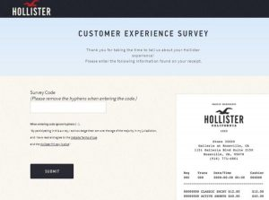 Holister Survey