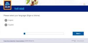 Tellaldi.com survey